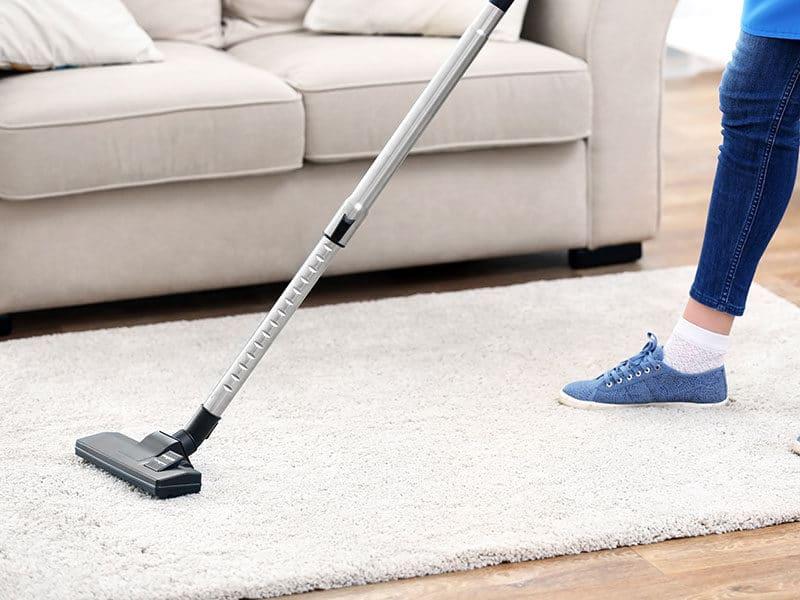 Vacuums High Pile Carpet