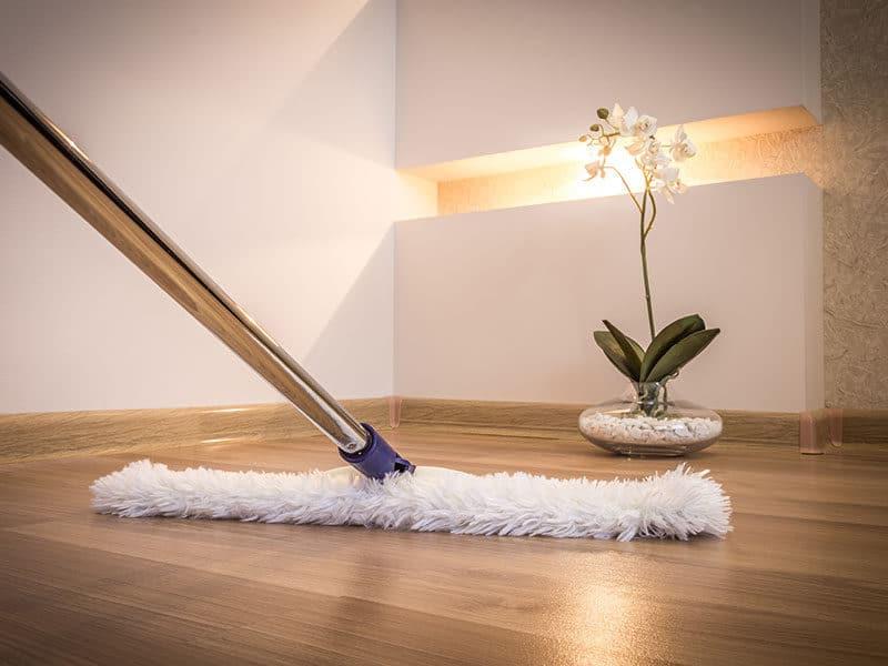 Broom for Hardwood Floor