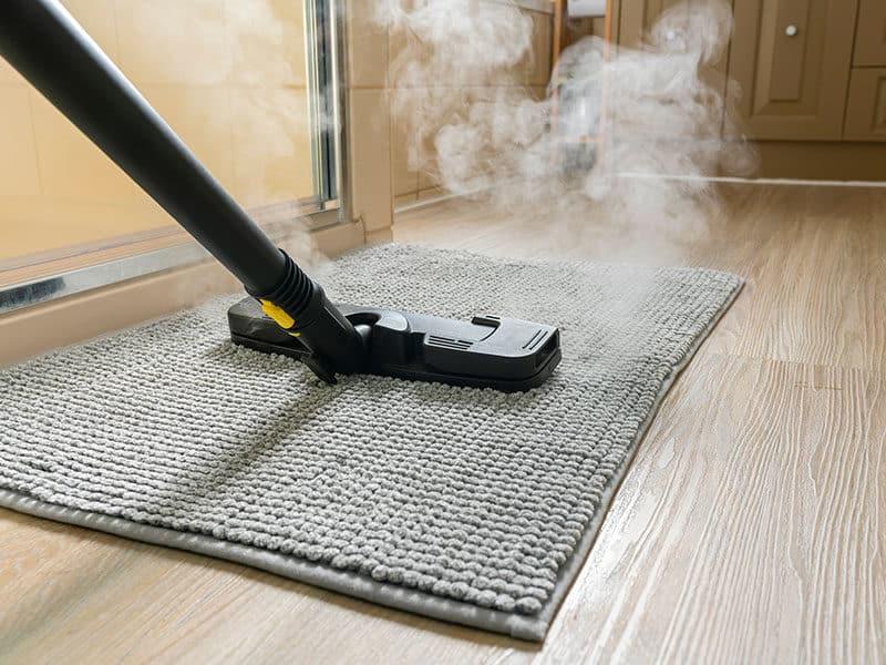 Vacuum and Mop Combo in Carpet