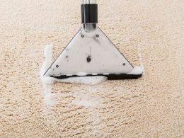 Best Wet Vacuum Cleaners