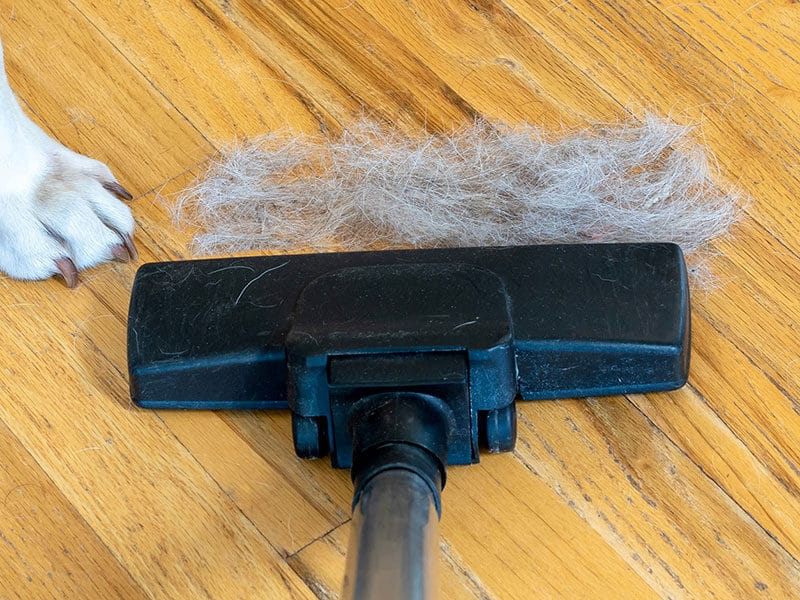 Vacuums for Long Hair