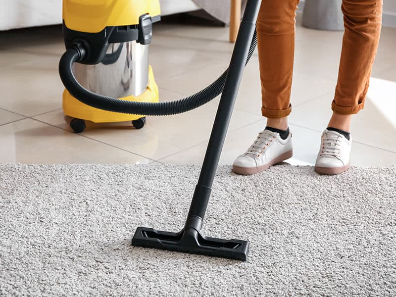 Ash Vacuums Cleaners in Carpet