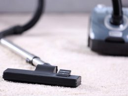 Best Canister Vacuum for Carpet