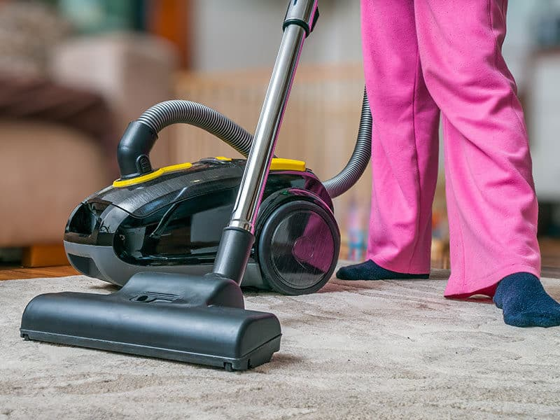 Canister Vacuum for Carpet