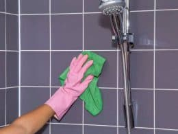 Best Shower Title Cleaners