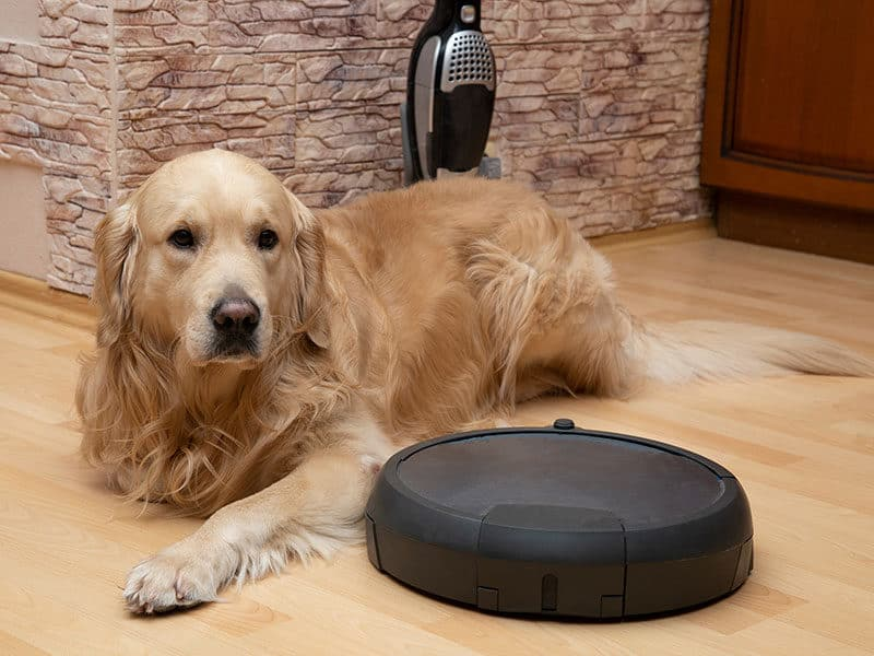 Robot Vacuums for Pet Hair