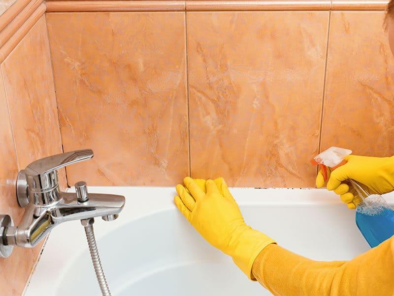 Bathtub Cleaners