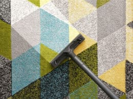 Best Vacuum Cleaners for Frieze Carpet