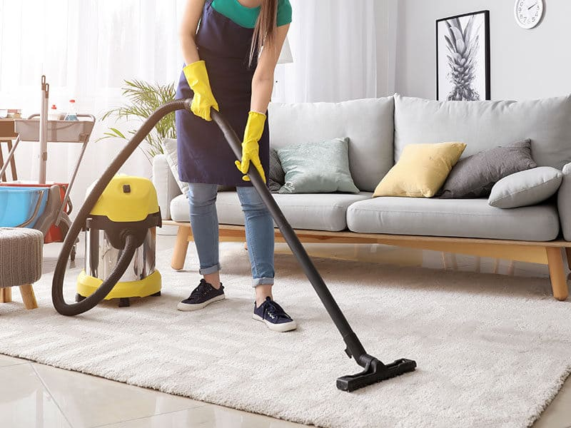 Vacuums for Area Rug