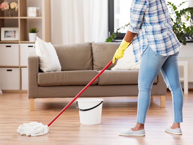Mops for Laminate Floor
