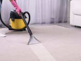Best Carpet Extractor