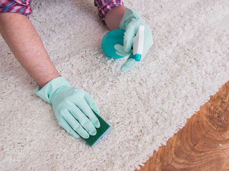 Carpet Cleaner Sprays
