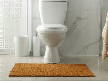 Best Bathroom Rugs