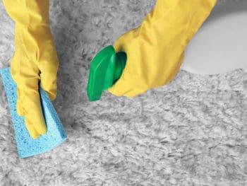 Best Carpet Deodorizers