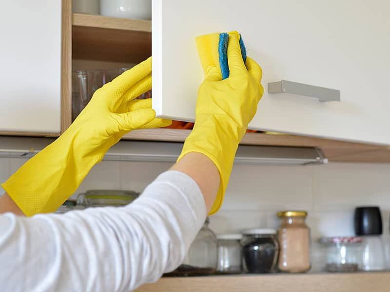 Kitchen Cabinet Cleaners