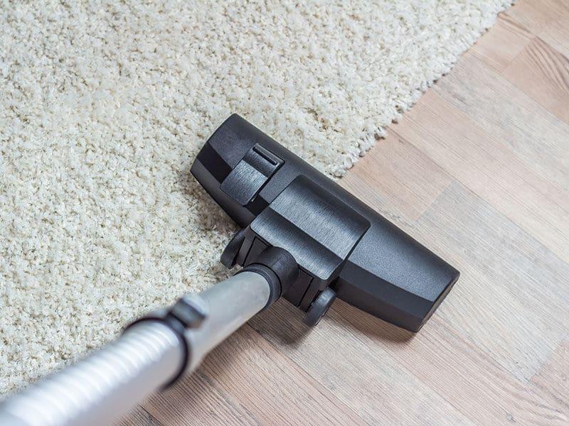 Vacuums for Wool Carpet