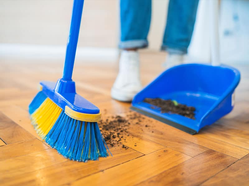 A broom brush and dustpan combo for floor sweeping