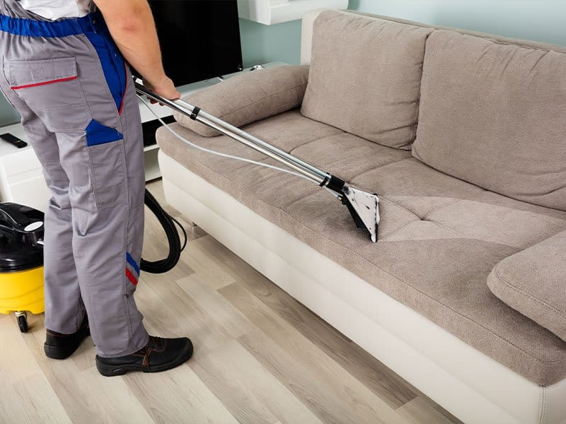 Vacuum cleaners help collect the pets' fur and debris on sofas effectively.