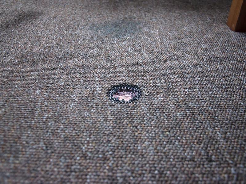 Burn on the Carpet