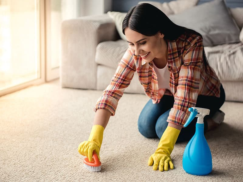 Carpet Cleaner Remove Stains