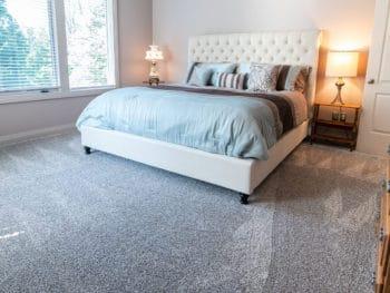 Clean Carpet Without a Vacuum