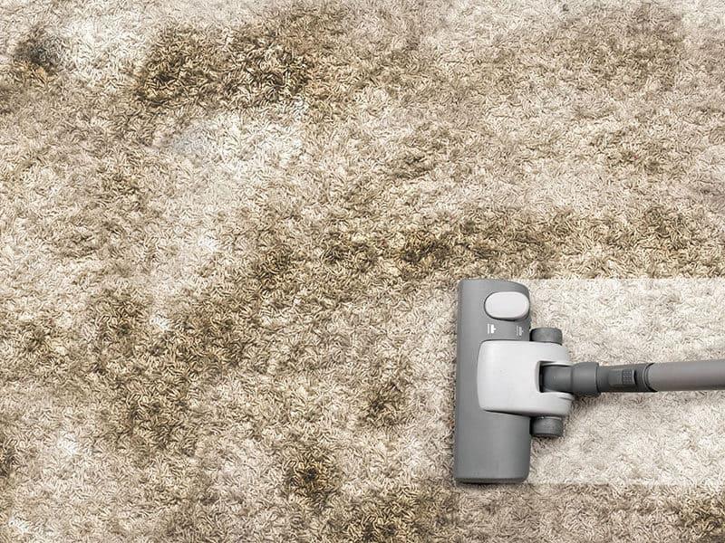 Clean Olefin Berber Carpet
