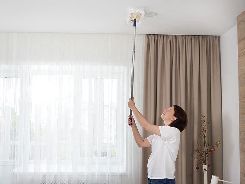 Cleaning Ceiling Mop