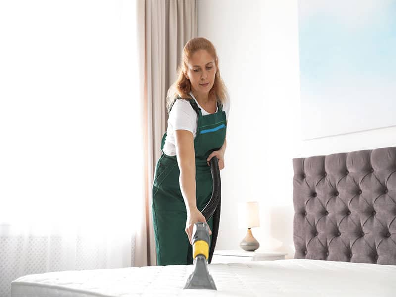 Cleaning Mattress Professional