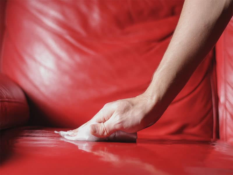 Cleaning Sofa Genuine Leather
