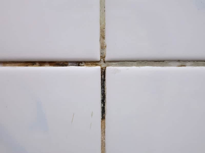 Dirty grout lines can affect the health of your family members!