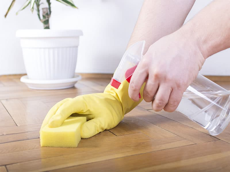 Floor Cleaning Sponge