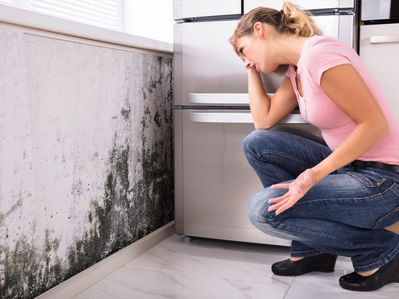 Mold is a Health Hazard