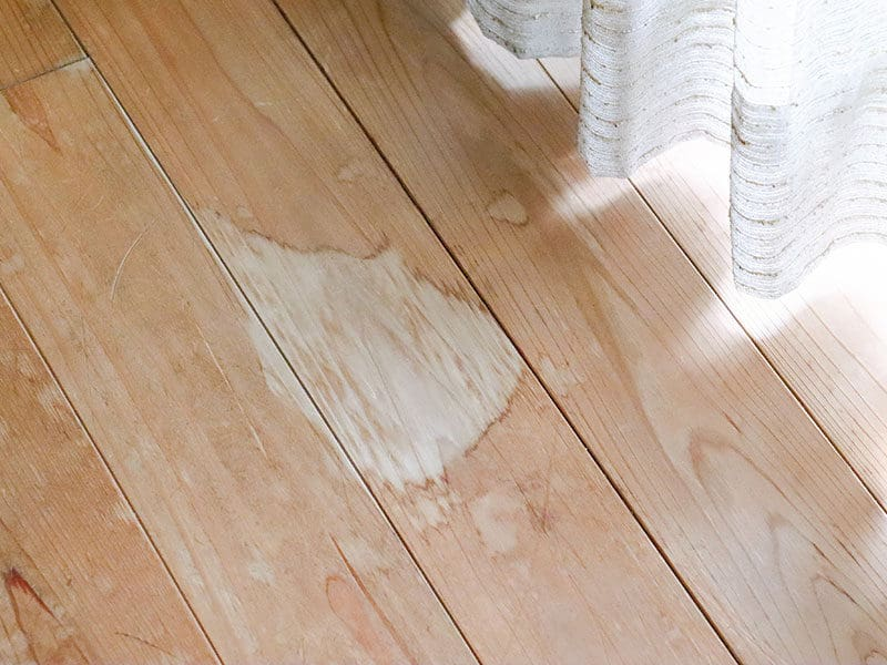 Remove The Stain in Hardwood