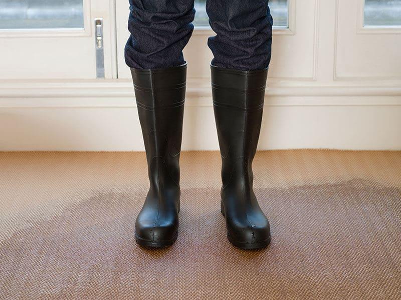 Rubber Boots on a Wet Carpet