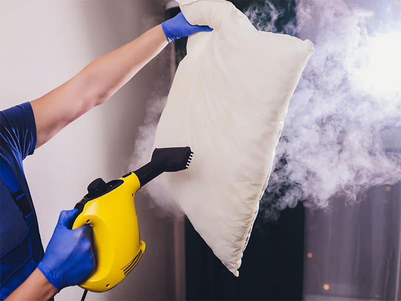 Steam Cleaner Sanitize Pillow