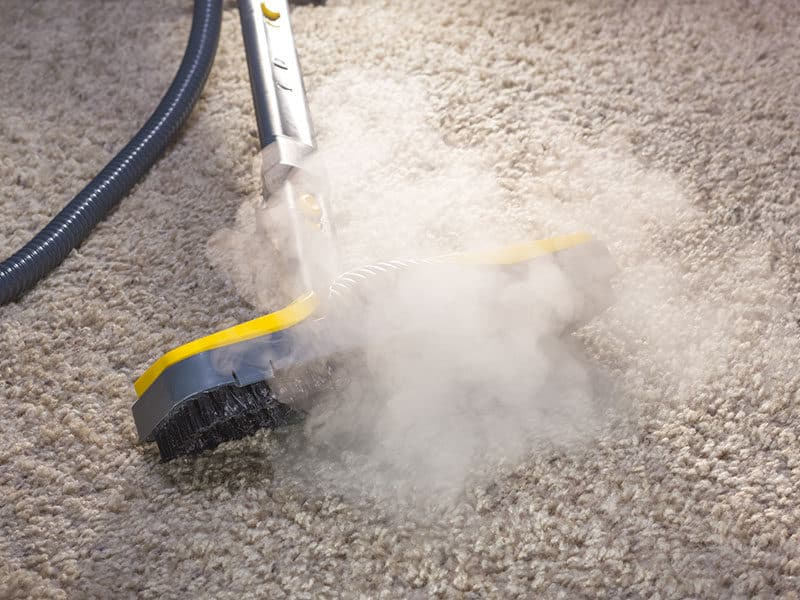 Steam Cleaning for Berber Carpets