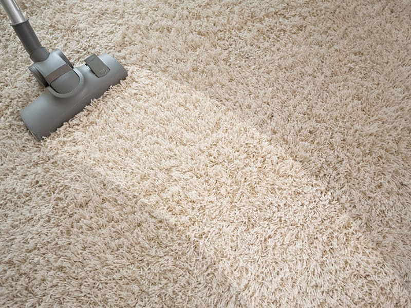 Vacuuming Rough Carpet Living Room Vacuum