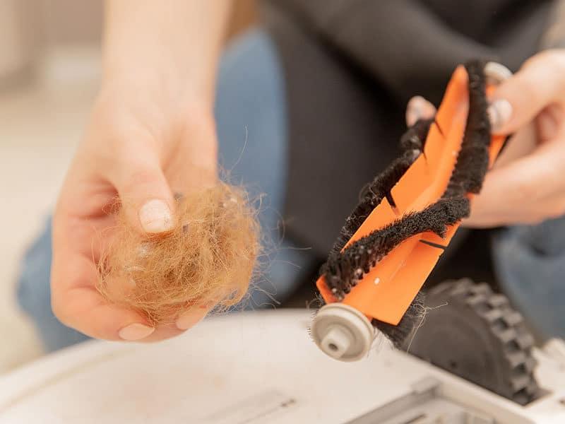 Woman Cleans Brush Hair Pet Debris