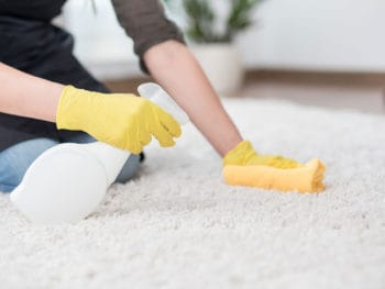 Clean Carpet and Area Rugs
