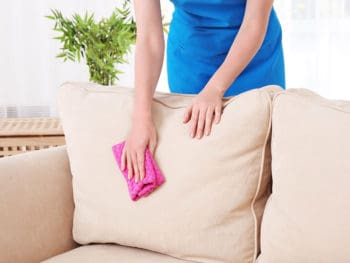 Homemade Upholstery Cleaner