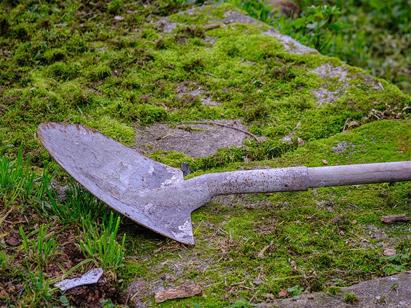 Shovel Abandoned On Field