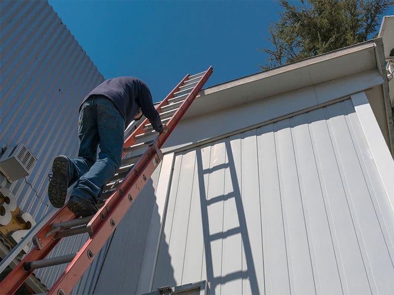 Worker By Ladder Work