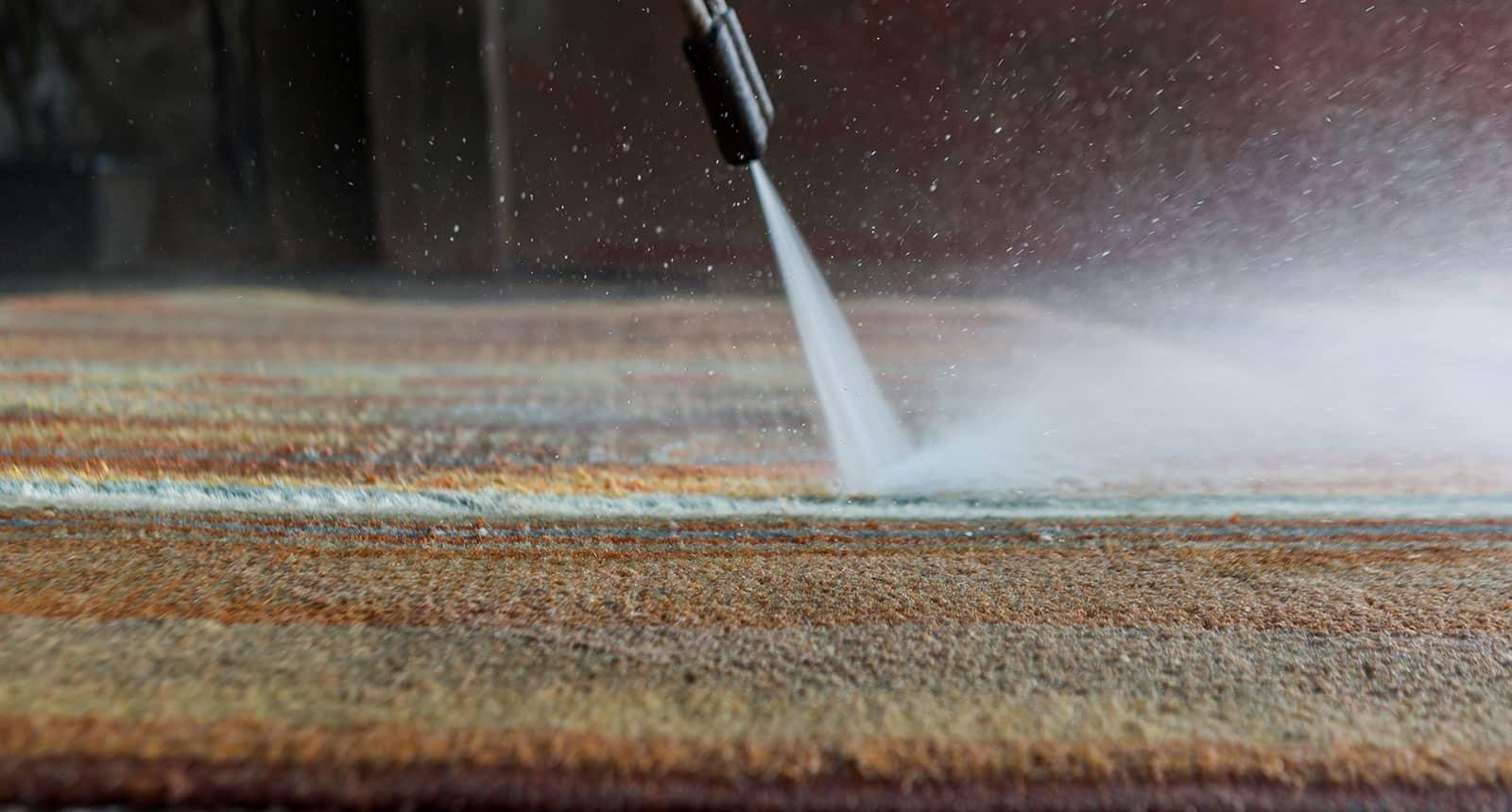 Carpet Wit