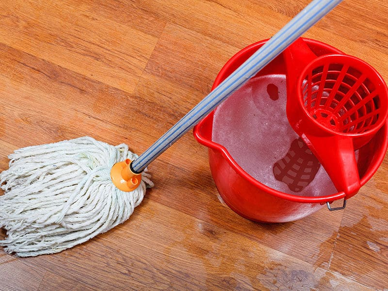 Cleaning Wet Floors