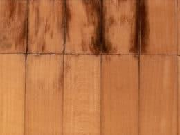 Mold off Wood