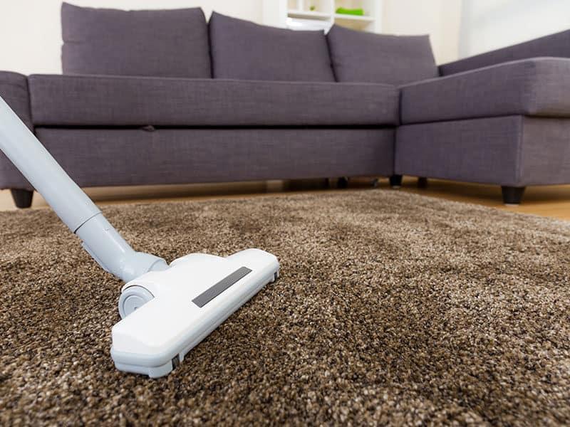 Carpet Vacuum Cleaner Living Room