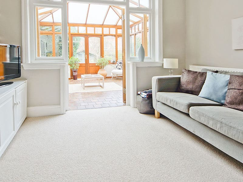 Lighter Shaw Carpet