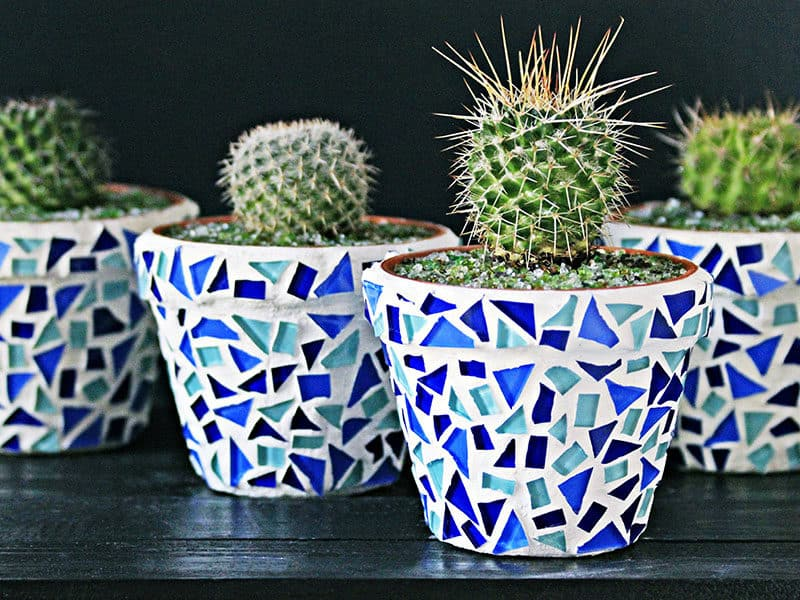 Pots Decorated With Blue