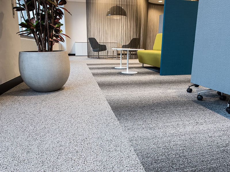 Stainmaster Carpets in Office