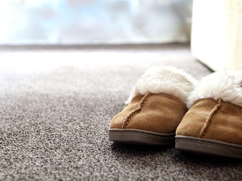 Suede Slippers on Carpet